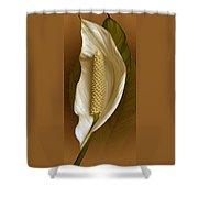 White Anthurium Flower Shower Curtain