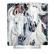 White Arabians Shower Curtain