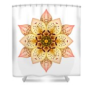 Asiatic Lily II Flower Mandala White Shower Curtain
