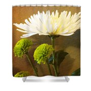 White Autumn Shower Curtain