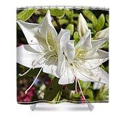 White Azaleas Shower Curtain