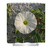 White Beach Flower Shower Curtain