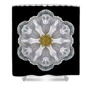 White Beach Rose IIi Flower Mandala Shower Curtain
