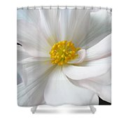 White Begonia Floral Shower Curtain