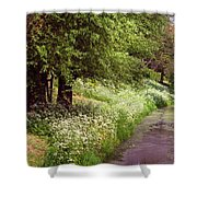 White Bloom Along The Dutch Canal. Netherlands Shower Curtain