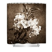 White Blossoms - Sepia Shower Curtain