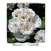 White Bouquet Shower Curtain