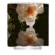 White Briar Rose Reflection Shower Curtain