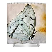 White Butterfly Shower Curtain