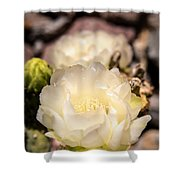 White Cactus Rose Shower Curtain