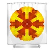 California Poppy I Flower Mandala White Shower Curtain