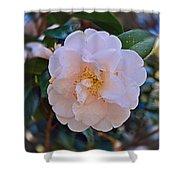 White Camellia Shower Curtain