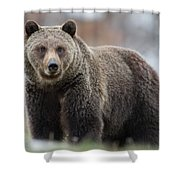 White Claws Shower Curtain