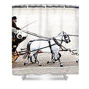 White Coach Horses Shower Curtain