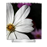 White Coreopsis Shower Curtain