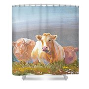 White Cows Painting Shower Curtain