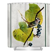 White Crowned Finch Vertical Shower Curtain