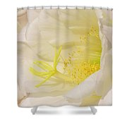 White Delicate Cactus Flower Shower Curtain