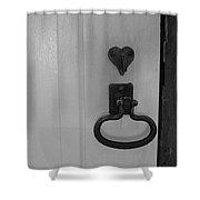 White Door  Shower Curtain
