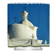 White Dove Of The Desert Shower Curtain