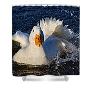 White Duck 1 Shower Curtain