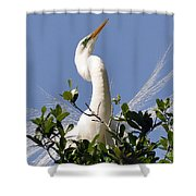 White Egret In Spring Shower Curtain