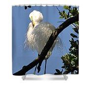 White Egret Shower Curtain