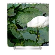 White Egret On Lilypads Shower Curtain
