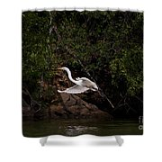 White Egret's Approach   #0615 Shower Curtain