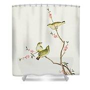 White Eye Bird Shower Curtain