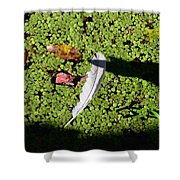 White Feather Lost Shower Curtain