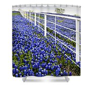 White Fence - Blue Bonnets Shower Curtain