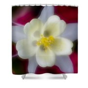 White Flower On Red Background Shower Curtain