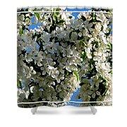 White Flowering Crabapple Tree Shower Curtain