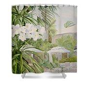 White Flowers Aruba Shower Curtain