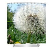 White Fluffy Shower Curtain