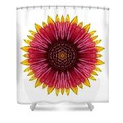 Galliardia Arizona Sun I Flower Mandala White Shower Curtain