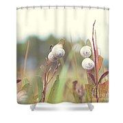 White Garden Snail Shower Curtain