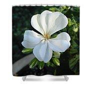 White Geranium Shower Curtain