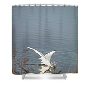 White Heron Feeding In Lake Shower Curtain