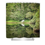White Horse Drinking Water Shower Curtain