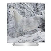White Horse In The Snow Shower Curtain