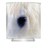 White Horse Look Shower Curtain