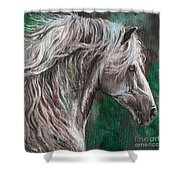 White Horse Painting Shower Curtain