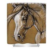 White Horse Soft Pastel Sketch Shower Curtain