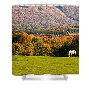 White Horses Grazing With View Of Green Mtns Shower Curtain