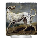 White Hound Shower Curtain