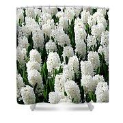 White Hyacinths Shower Curtain