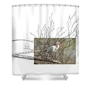 White Ibis Shower Curtain