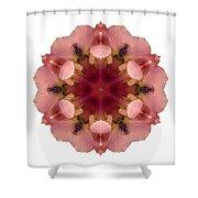 Iris Germanica I Flower Mandala White Shower Curtain